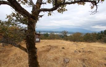 RH Oak Box
